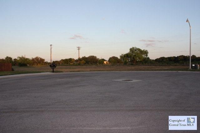 671 Oak Creek Parkway, Seguin, TX 78155 (MLS #203416) :: Vista Real Estate