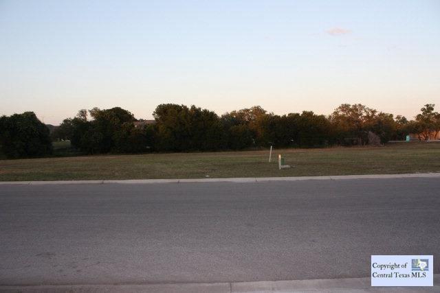 603 Oak Creek Parkway, Seguin, TX 78155 (MLS #203422) :: RE/MAX Family