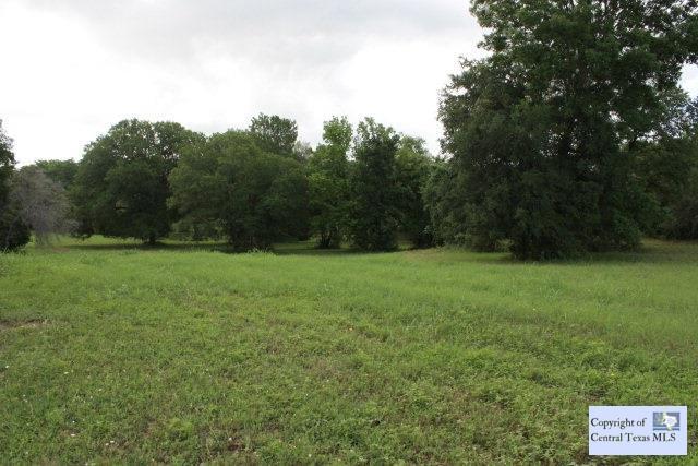 1923 Monterrey Oak, Seguin, TX 78155 (MLS #203431) :: Vista Real Estate