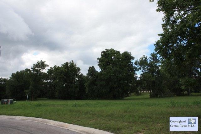1919 Monterrey Oak, Seguin, TX 78155 (MLS #203433) :: Vista Real Estate