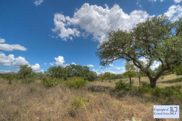 0-LOT #33 Nature's Way, New Braunfels, TX 78132 (MLS #206355) :: Texas Premier Realty