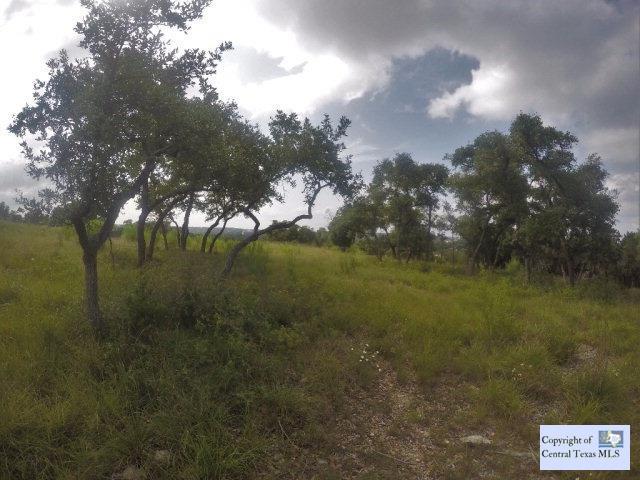 616 Caballo Trail, Canyon Lake, TX 78133 (MLS #221300) :: Texas Real Estate Advisors