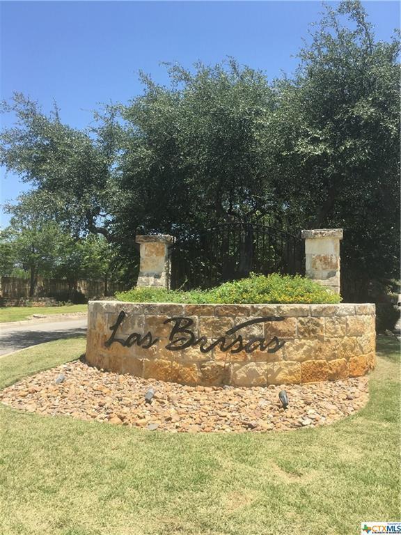 612 Aragon Court, Canyon Lake, TX 78133 (MLS #351823) :: Magnolia Realty