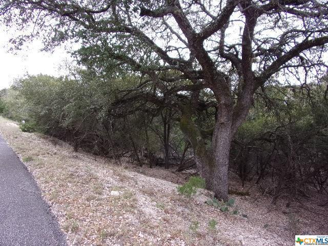474/494/514 Herauf Drive, Canyon Lake, TX 78133 (MLS #361964) :: The Zaplac Group