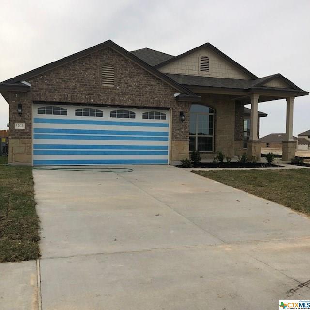 5203 Hacienda Drive, Killeen, TX 76549 (MLS #363862) :: Erin Caraway Group