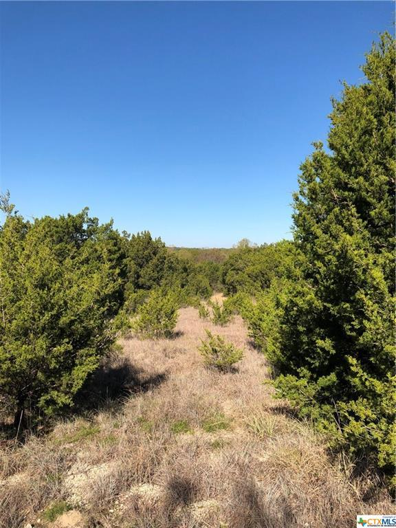 850 S U.S. Highway 183, Goldthwaite, TX 76844 (MLS #365212) :: The i35 Group
