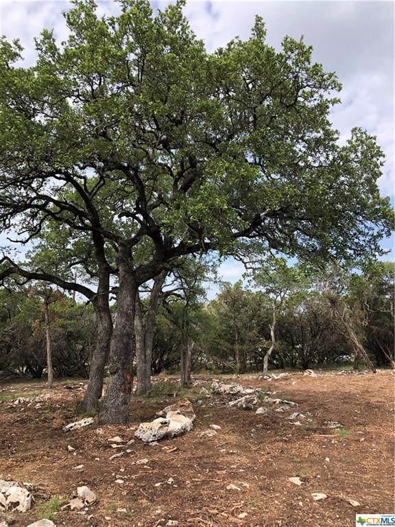 810 Lone Oak Road, New Braunfels, TX 78132 (MLS #414637) :: The Real Estate Home Team