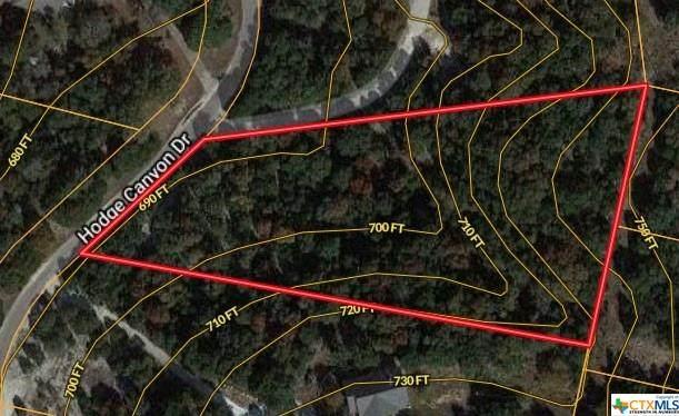 9637 Hodge Canyon Drive, Salado, TX 76571 (MLS #419231) :: The Real Estate Home Team