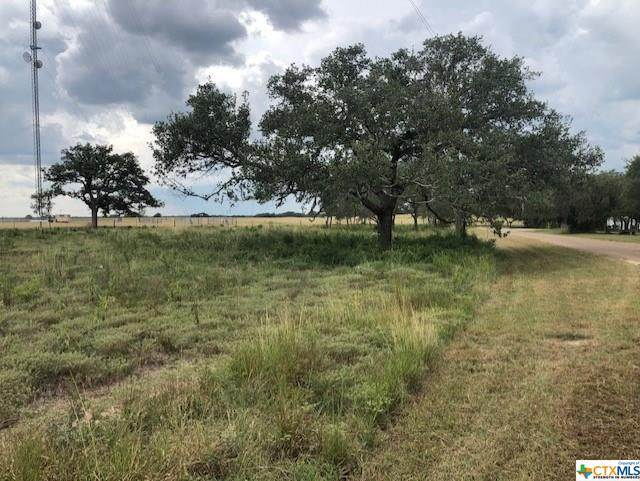 0 Scenic Loop Drive, Goliad, TX 77963 (MLS #422125) :: Kopecky Group at RE/MAX Land & Homes