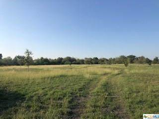 2060 County Road 302 Road, Shiner, TX 77984 (MLS #424196) :: The Myles Group