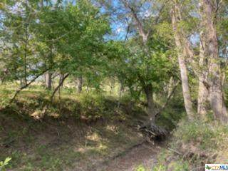 TBD Wilson Road Tract E, Red Rock, TX 78662 (MLS #424633) :: RE/MAX Family