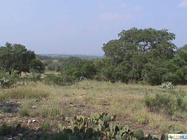 411 Brookhollow, New Braunfels, TX 78132 (MLS #429345) :: Vista Real Estate