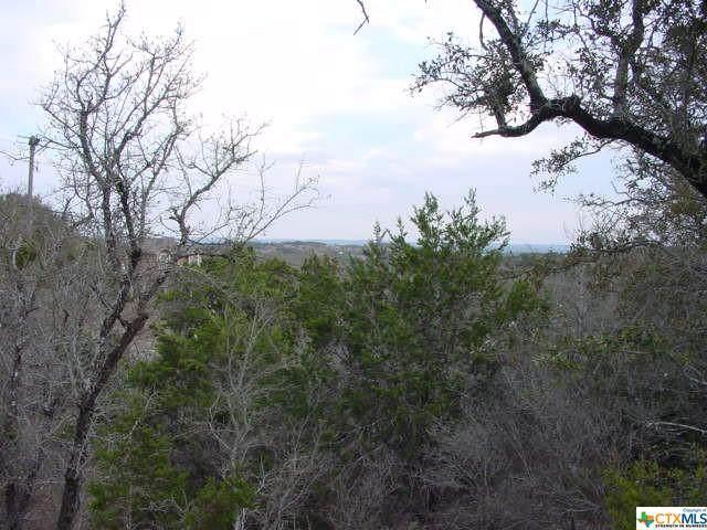 1178 Primrose Path, Canyon Lake, TX 78133 (MLS #433641) :: Kopecky Group at RE/MAX Land & Homes