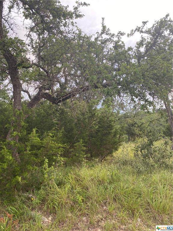 250 Carney Lane, Wimberley, TX 78676 (#443839) :: Realty Executives - Town & Country