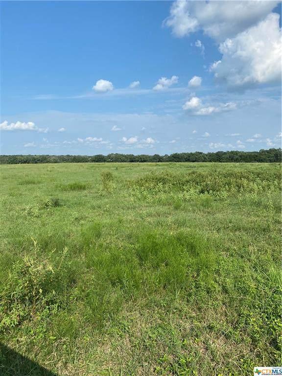 00 Fm 318, Yoakum, TX 77995 (MLS #446170) :: RE/MAX Land & Homes