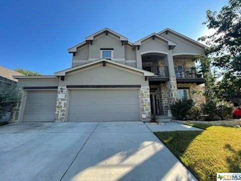 311 Snow Goose, New Braunfels, TX 78130 (MLS #451151) :: The Zaplac Group
