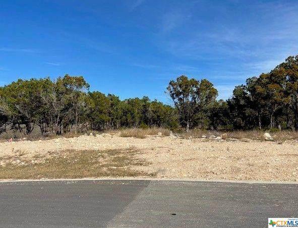 5712 Copper Vista, New Braunfels, TX 78132 (MLS #455189) :: Vista Real Estate