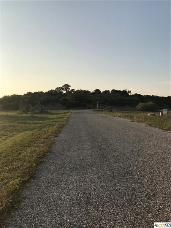 156 Gull Lane, Spring Branch, TX 78070 (MLS #323735) :: Magnolia Realty