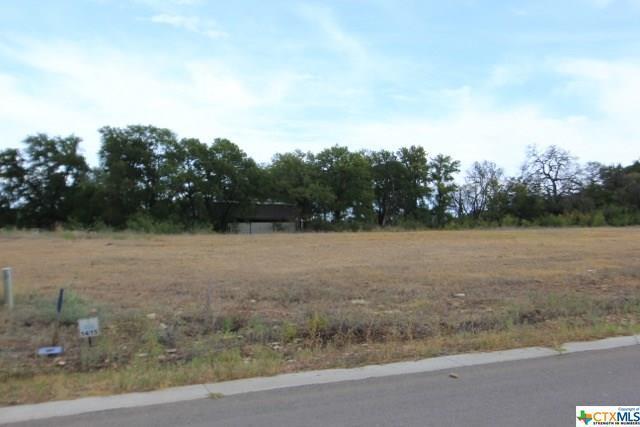 624 Creekside, Belton, TX 76513 (MLS #350328) :: Erin Caraway Group