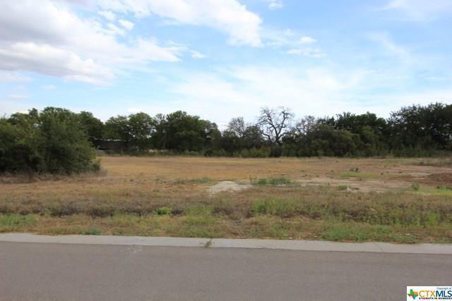 608 Creekside, Belton, TX 76513 (MLS #350330) :: Erin Caraway Group