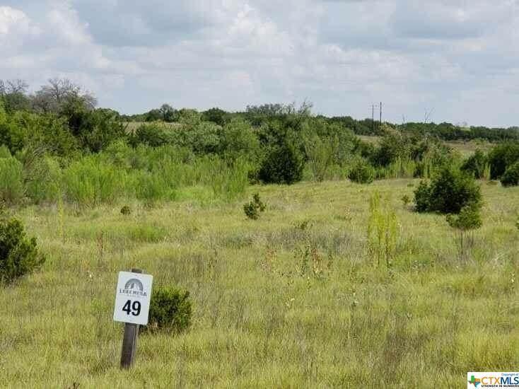 Lot 49 Lone Mesa Ranch Road - Photo 1