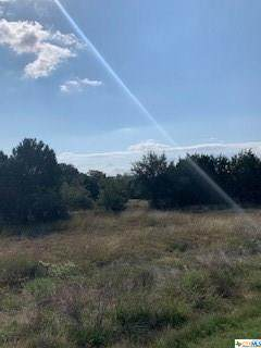 1164 Cordova Bend, Canyon Lake, TX 78133 (MLS #424414) :: Kopecky Group at RE/MAX Land & Homes
