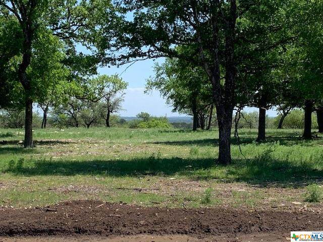 00 Private Road 4718, Kempner, TX 76539 (MLS #432531) :: The Real Estate Home Team