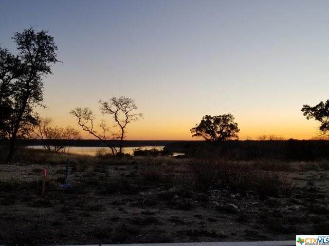 10101 Waterview Cove, Temple, TX 76557 (MLS #432776) :: Texas Real Estate Advisors