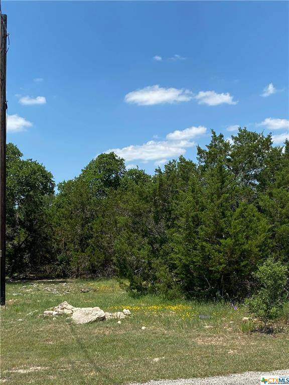 1122 Madrone Road, Fischer, TX 78623 (MLS #441052) :: Neal & Neal Team