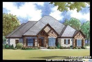 1330 Mystic Shores Boulevard, Spring Branch, TX 78070 (MLS #424096) :: Brautigan Realty