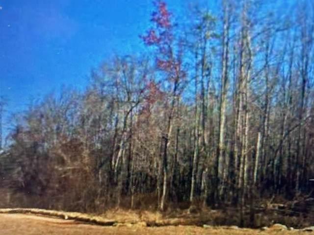 180 Terrell Road, Elko, GA 31025 (MLS #206395) :: AF Realty Group