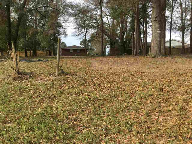216 Hill Lane, Perry, GA 31069 (MLS #211868) :: AF Realty Group