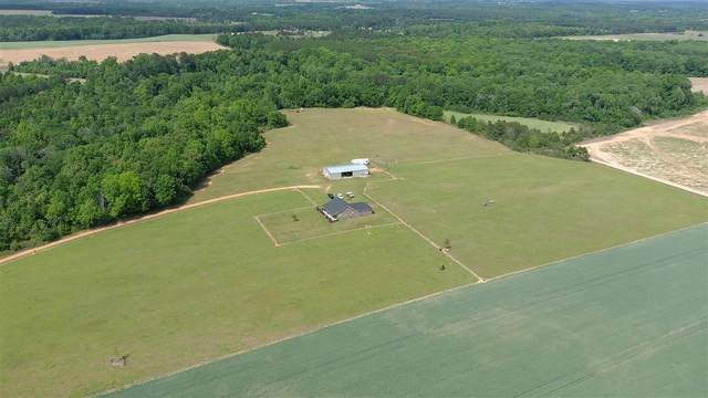 1093 Vienna Highway, Hawkinsville, GA 31036 (MLS #212402) :: AF Realty Group