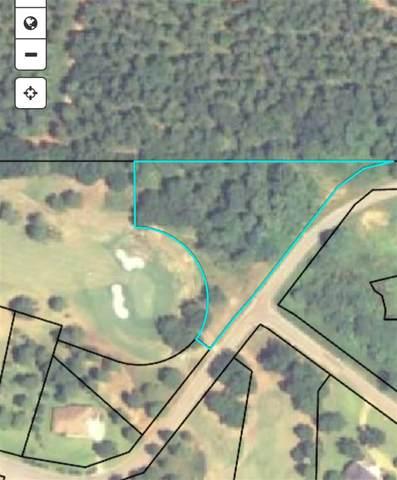 Crabapple Drive, Hawkinsville, GA 31036 (MLS #213526) :: AF Realty Group