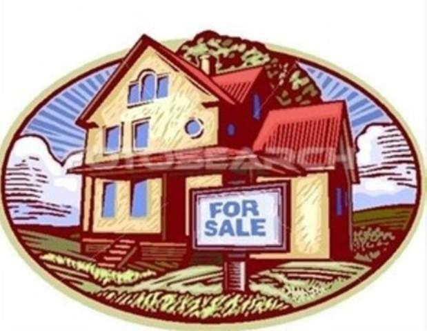 201 Legacy Park Drive, Perry, GA 31069 (MLS #216067) :: AF Realty Group
