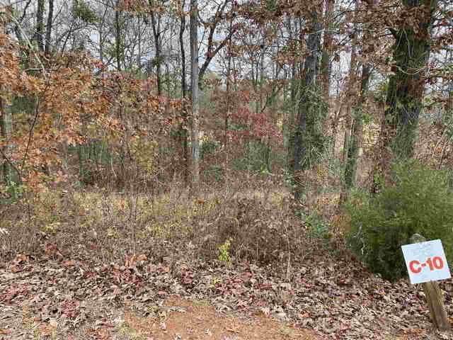 Lot 10 Oak Dr, Hawkinsville, GA 31036 (MLS #207056) :: AF Realty Group