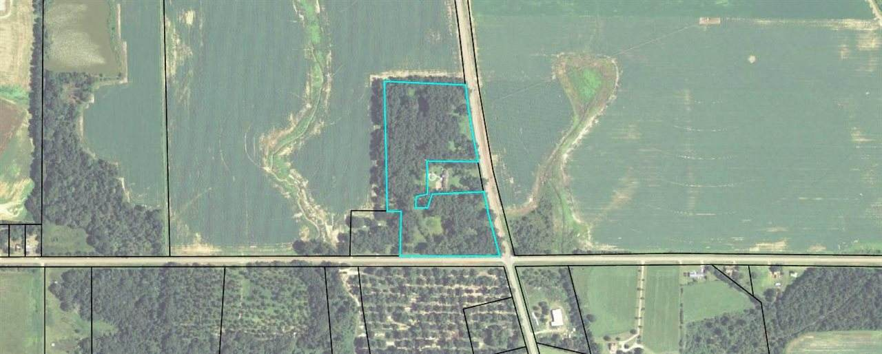 13.57 Acres Abbeville Highway - Photo 1