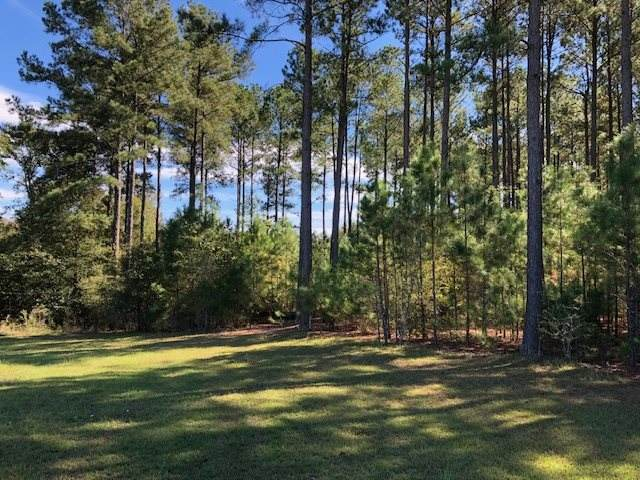 West Lakeshore Drive, Cochran, GA 31014 (MLS #204443) :: AF Realty Group