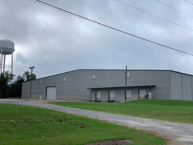 236 E Willow Creek Lane, McRae, GA 31055 (MLS #206041) :: AF Realty Group