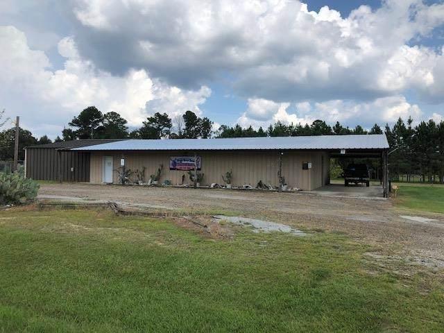 588 Cochran Highway, Hawkinsville, GA 31036 (MLS #215677) :: AF Realty Group