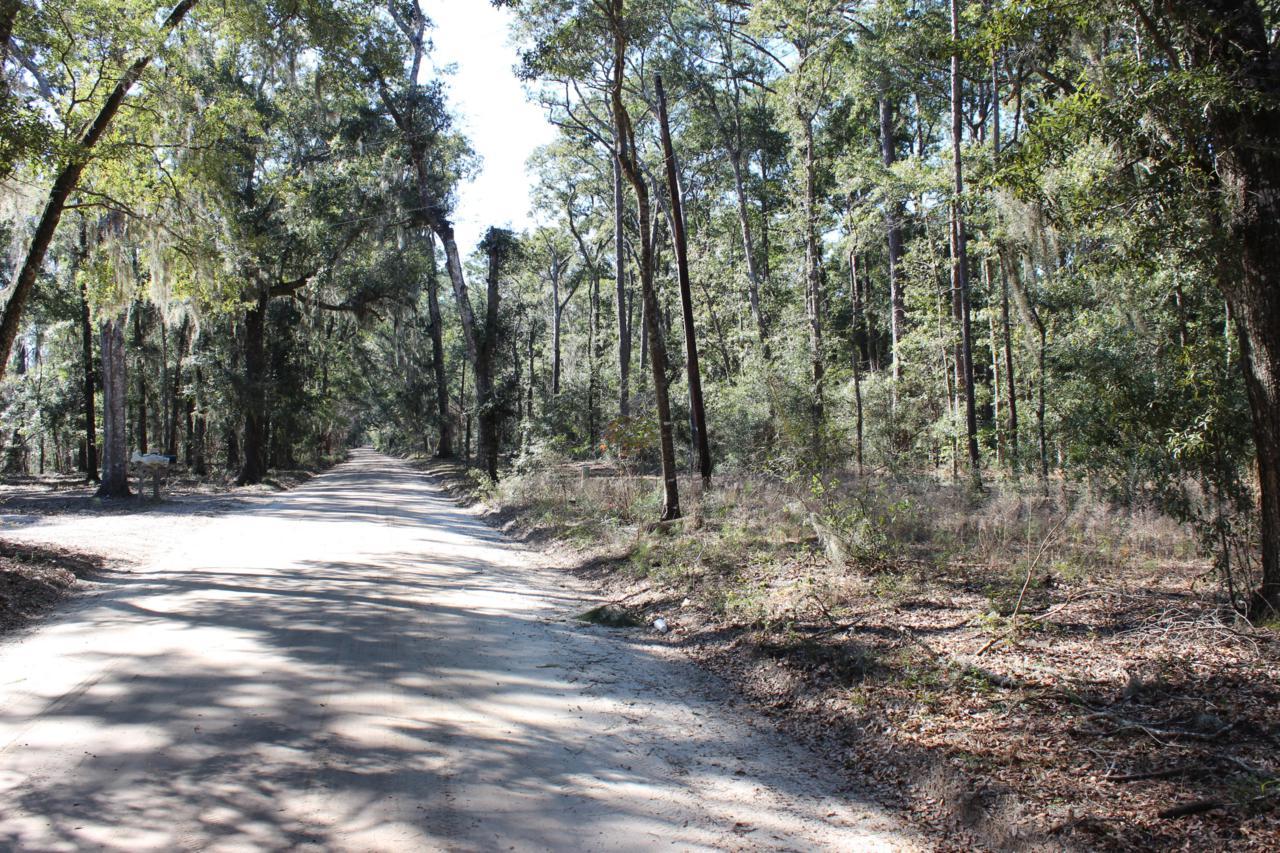 8610 Raccoon Island Road - Photo 1