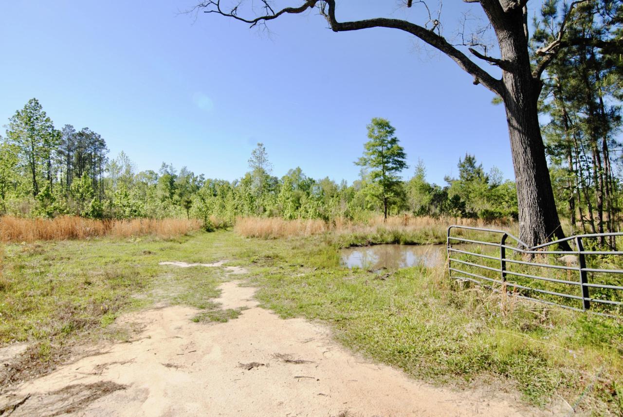 0 Mendel Rivers Road - Photo 1