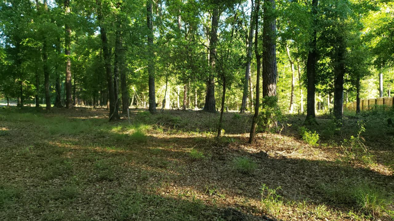 240 Plantation Lane - Photo 1