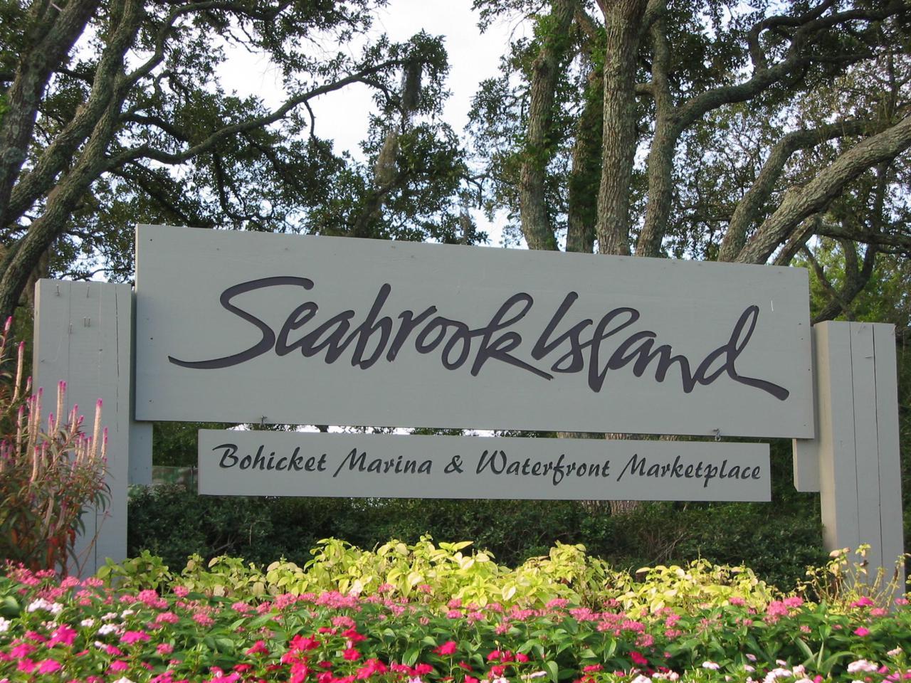 3009 Seabrook Village Drive - Photo 1