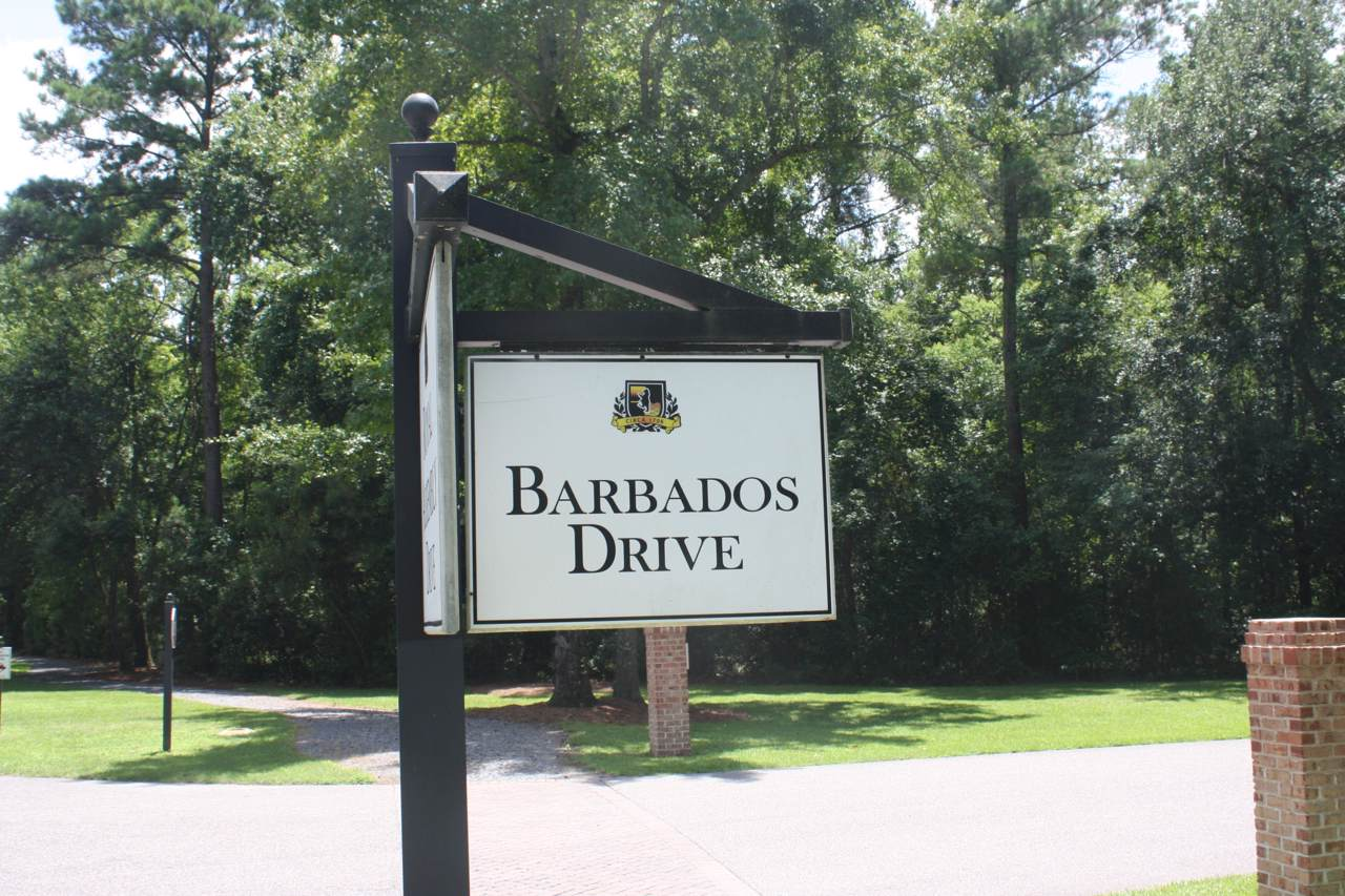 690 Barbados Drive - Photo 1
