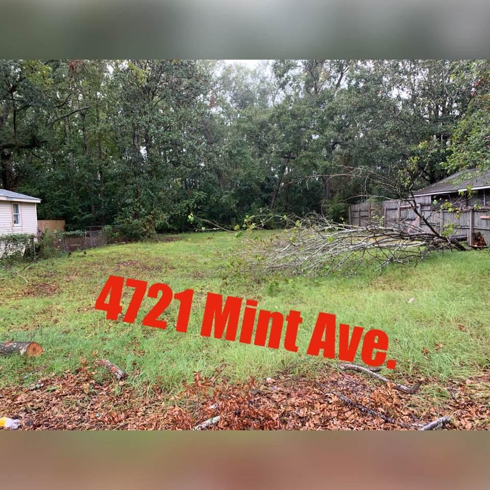 4721 Mint Avenue - Photo 1