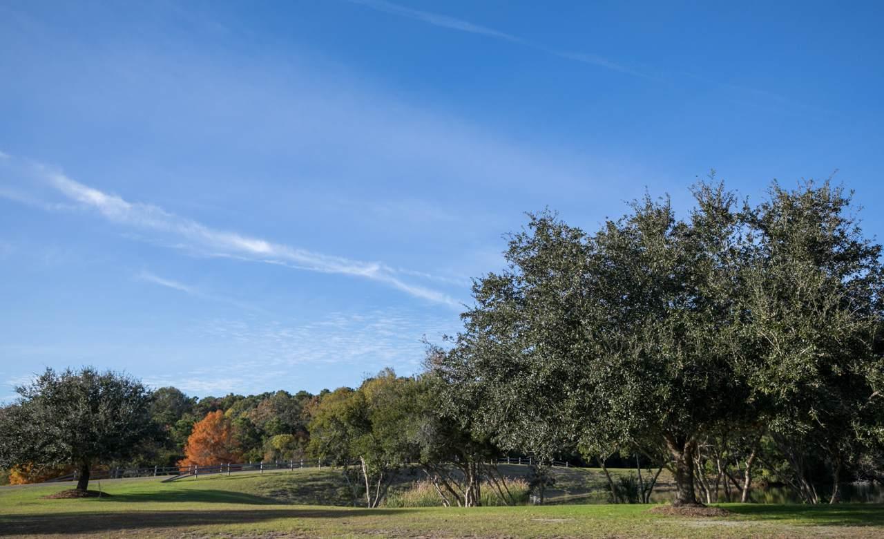 37 B Nesting Egret Drive - Photo 1