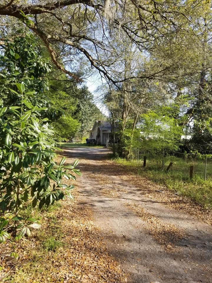 3428 Live Oak Drive - Photo 1