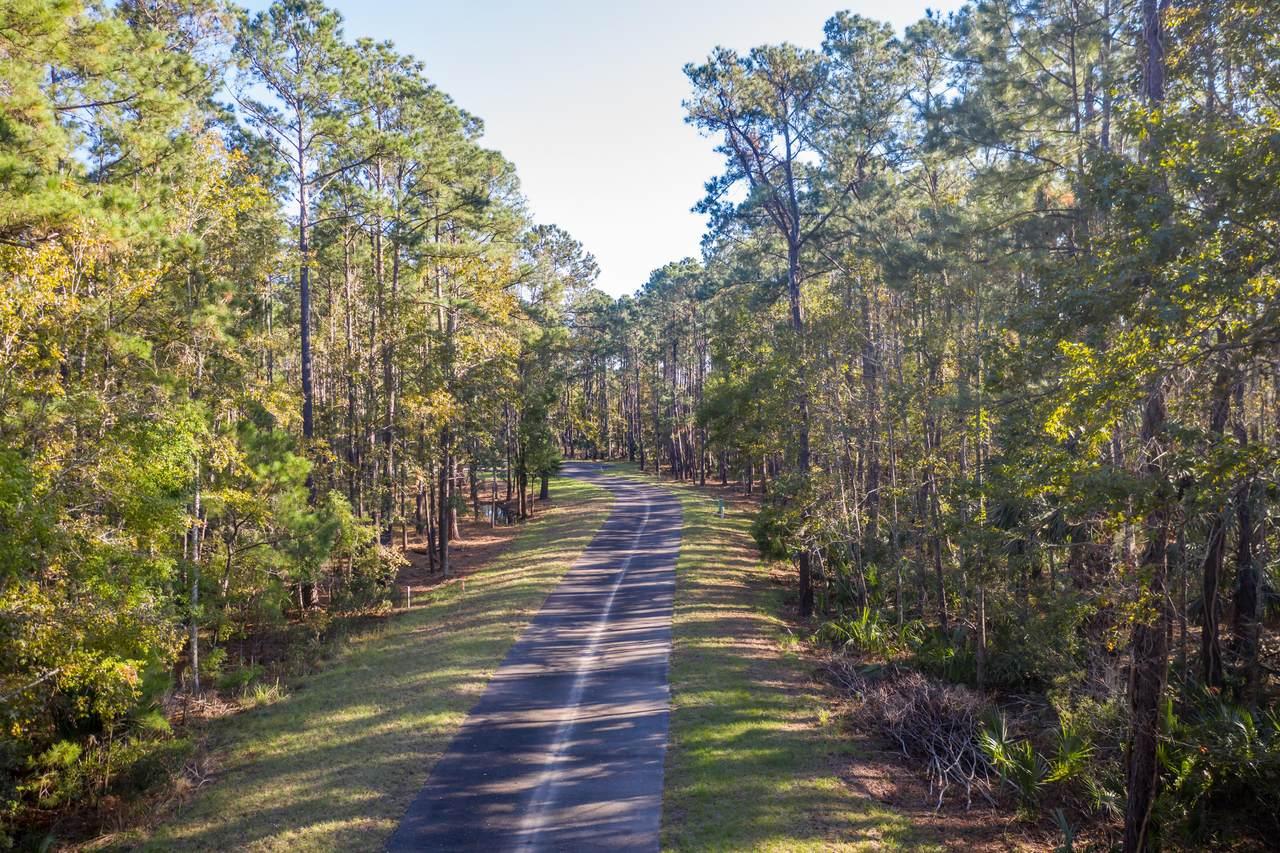 44 Nesting Egret Drive - Photo 1
