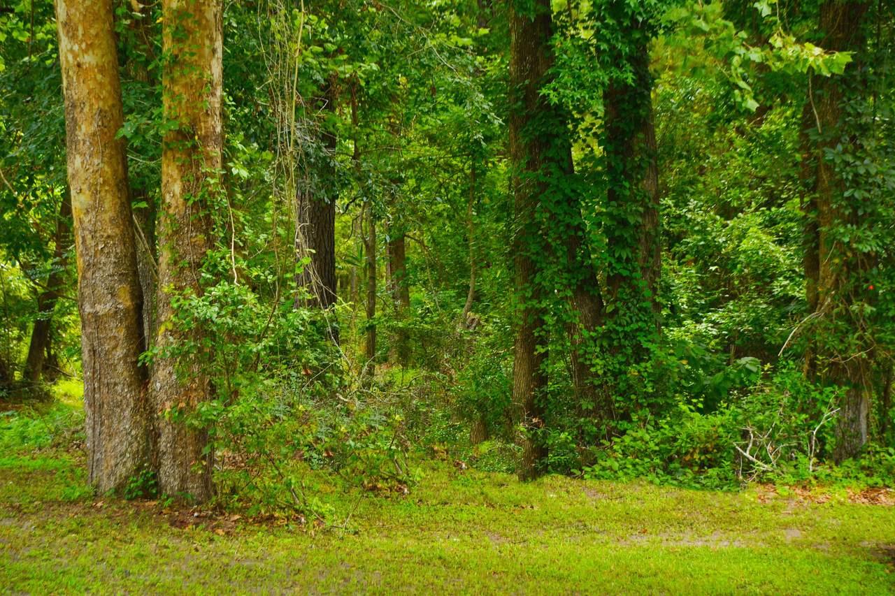 0(Lot 1) Scott-White Road - Photo 1